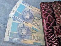 Pengar med plånboken Arkivfoton