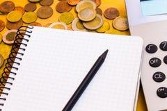 Pengar och anteckningsbok Arkivfoto