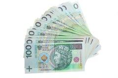Pengar och besparingar. Bunt av zlotysedlar för polermedel 100's Arkivbild