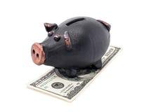Pengar och piggy grupp Arkivfoto