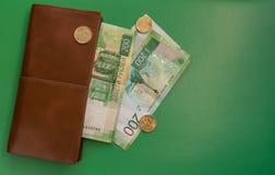 pengar på en grön bakgrund med en plånbok arkivbild
