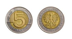 pengar polerad zloty Arkivfoton