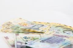 Pengar rumänska Leu Stack Royaltyfri Fotografi