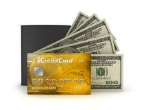 Pengar - sedel-, kreditkort- och läderplånbok Arkivbild