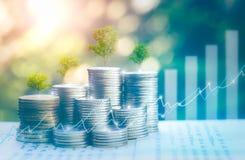 Pengar som växer, stall för begrepp för affärsframgång som ett stort trädträd som växer på högen av myntpengar fotografering för bildbyråer
