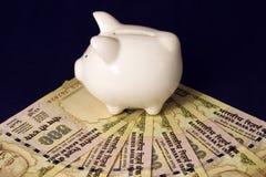pengar sparar Arkivfoton