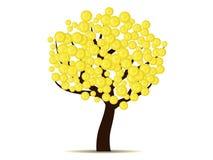 Pengar växer på träd (guld- mynt på träd) Arkivbilder