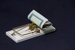 Pengarfälla på svart bakgrund Arkivbild