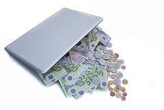 pengarflod Fotografering för Bildbyråer