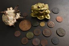Pengargroda med gamla mynt royaltyfri bild