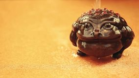 Pengarpaddavatten tappar dag stock video