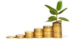 Pengartillväxt Fotografering för Bildbyråer