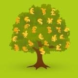 Pengarträd Arkivfoton