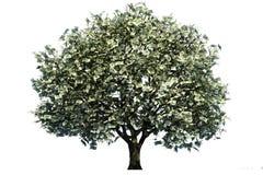 Pengarträd royaltyfri illustrationer
