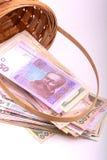 Pengaruppsättning i korg-, dollar-, euro- och ukrainarepengar Royaltyfri Foto