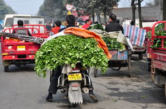Penghou, China: Farmer on Motorcycle with Celery Royalty Free Stock Images