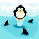 Penguin. Little penguin and three sharks Stock Photos