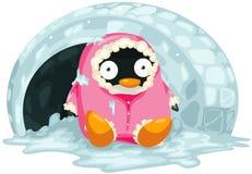 Penguin. Illustration of isolated cartoon penguin on white Stock Photography