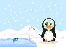 Penguin Stock Image