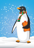 Penguin. With scarf and hot water bottle Stock Photos