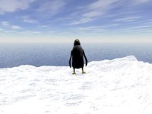 Penguin. Lonely  penguin on a floating ice floe Royalty Free Stock Photography