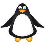 Penguin Royalty Free Stock Photo