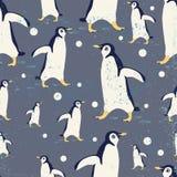 penguin Fotografia Stock Libera da Diritti