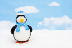 Penguin Stock Photography