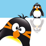 Penguin. Funny Comic Style Penguin with background Royalty Free Stock Image
