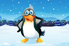 A penguin across the village Royalty Free Stock Images