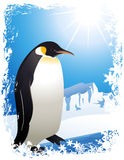 Penguin in the Arctic Stock Photos