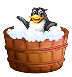 A penguin at the bathtub Stock Photo