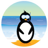 Penguin on the beach  part two Stock Image