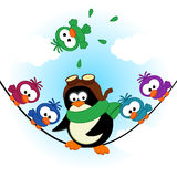 Penguin birds on electric wire Stock Images