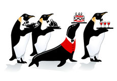 Penguin birthday Royalty Free Stock Photo