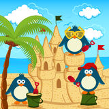 Penguin built  sand castle Royalty Free Stock Images