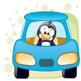 Penguin in a car Royalty Free Stock Photos