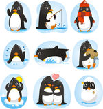 Penguin cartoon action set. Penguin set  illustration, with penguins in different situations like dancing, fishing, winter, swimming, eating, in love collection Stock Photography