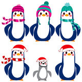 Penguin Character Collection Royalty Free Stock Photos