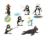 Penguin character Royalty Free Stock Photo