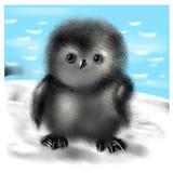 Penguin chick Stock Image