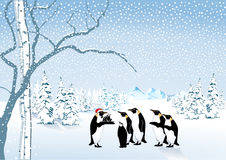 Penguin Christmas Stock Photography