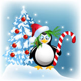 Penguin with Christmas candy. And Santa hat Stock Photos