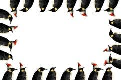 Penguin christmas frame Stock Image