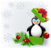 Penguin in the Christmas gift box Stock Image