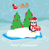 Penguin with Christmas gift Royalty Free Stock Photo
