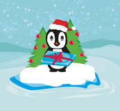Penguin with Christmas gift Stock Photography