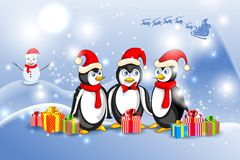 Penguin in Christmas Night Stock Photos