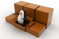 Penguin  coming out from cargo , parcel box Stock Image