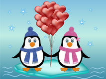 Penguin couple love concept Stock Image